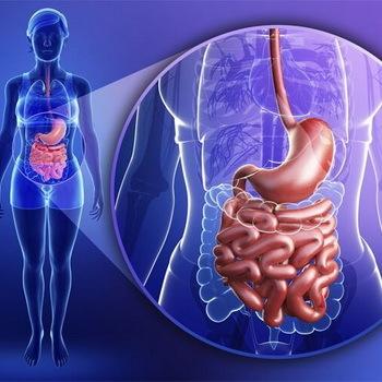 Лечение пищевого отравления в домашних условиях: лучшие народные средства