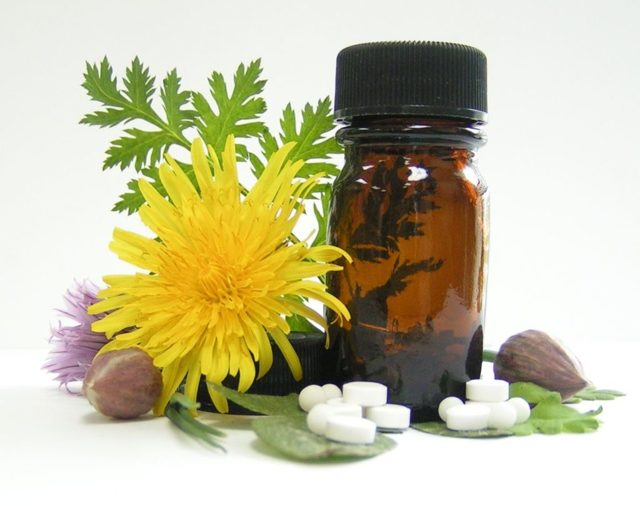 Эффективность гомеопатических препаратов от геморроя